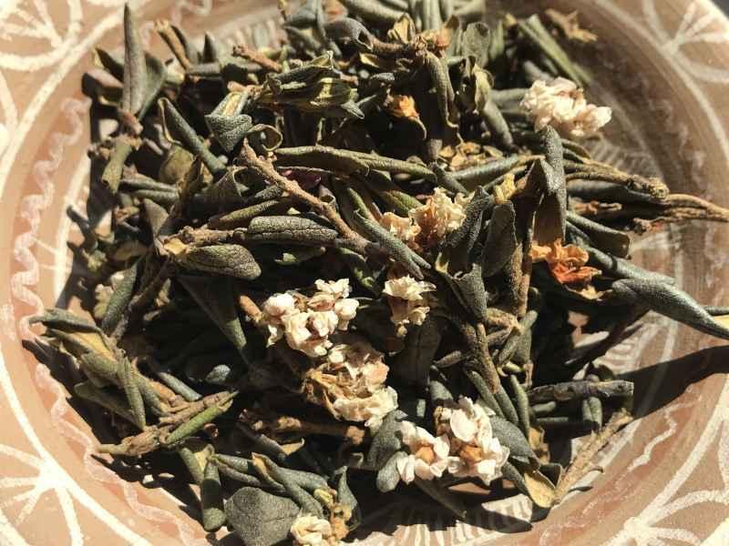 Чай зеленый или черный? В чем отличие